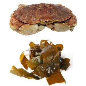 Jonah Crab & Seaweed