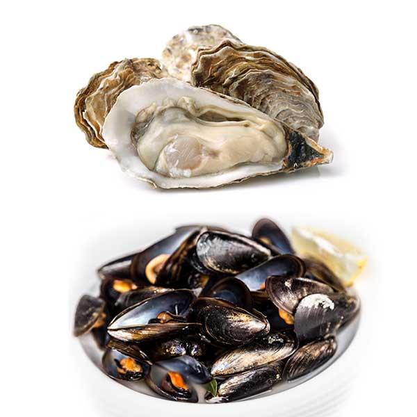 1 Dozen Oysters & Muscles Box